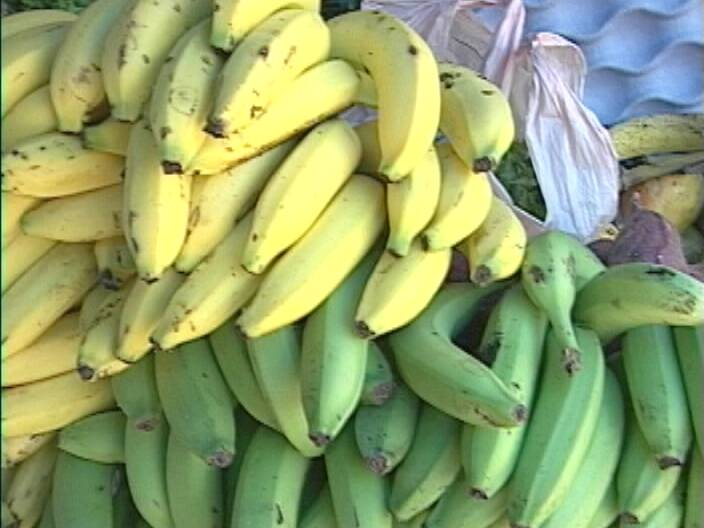 banana industry Global issues for breakfast: the banana industry and its problems faq (cohen mix) by rebecca cohen bananas are just a fruit, how are they considered a.