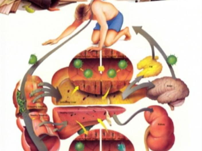 Healthy Living looks at detox diets