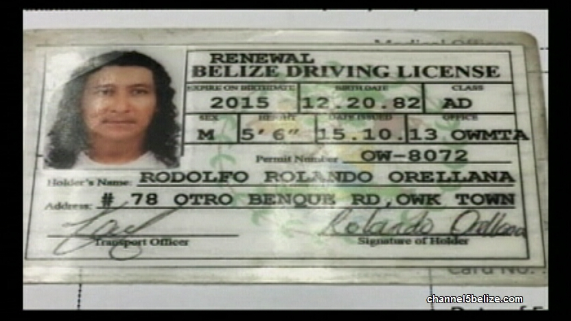 Transport Department Weighs in on Fake Licenses