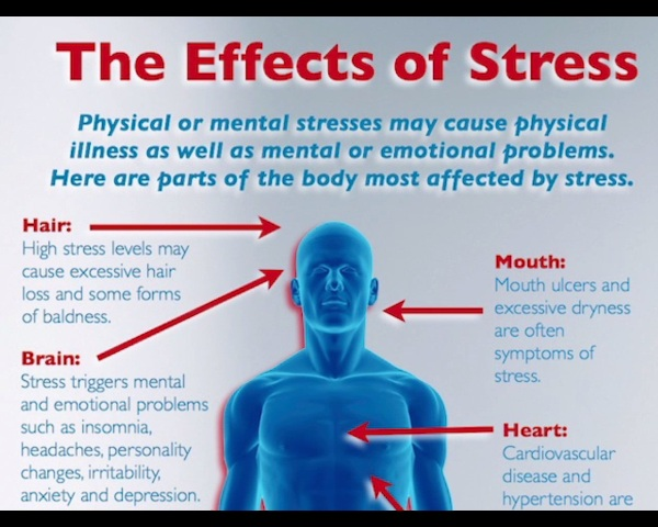"""the effects of stress on physical illness In order to combat the very real physical effects of stress, experts recommend a number of lifestyle changes to reduce the symptoms of chronic stress for americans what is stress according to the national institute of mental health, stress can be defined as """"the brain's response to any demand"""" stress can be triggered by a number of."""